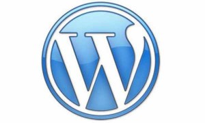 Wordpress Expert in Albuquerque | Rio Rancho | New Mexico | SEO | Search Engine Optimization