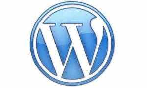 Wordpress Expert in Albuquerque | Rio Rancho | New Mexico | SEO | Search Engine Optimization
